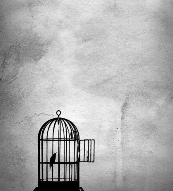 Hobbes y la libertad de expresión – Parte5