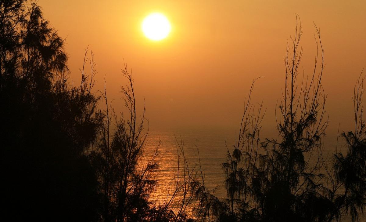 Enseñanzas de la naturaleza: propiedades de loscuerpos